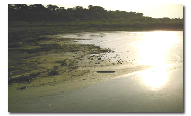 Lake Victoria's decreasing water levels