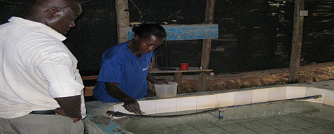 Fish Farming in Uganda: The Challenging Growth of Sunfish Farms Ltd
