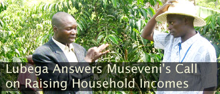 Lubega Answers Museveni's Call on Raising Household Incomes